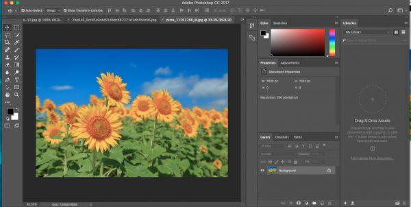 JPEGはもっとも一般的な画像フォーマット